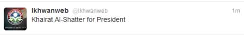 Muslim Brotherhood tweets support for El-Shater for president